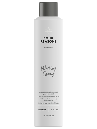 Four Reasons Professional Working Spray 300ml