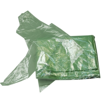 Vihreä kolmioliina